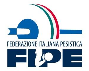 Logo Fipe