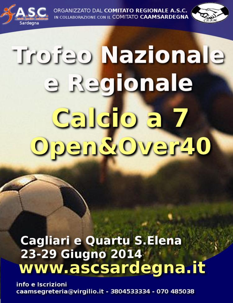Finali Calcio a 7