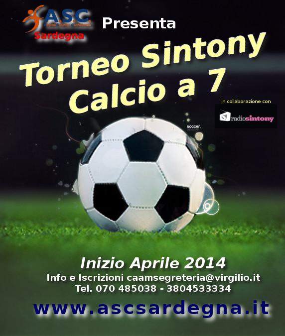 Torneo Sintony 2014