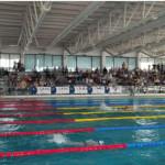 Foto Nuoto e Nuoto Salvamento1