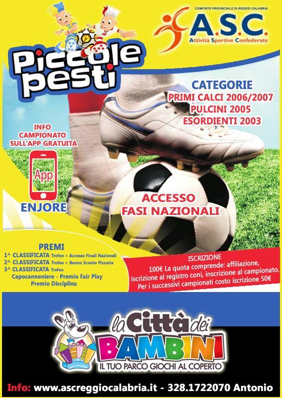 Campionati Reggio Calabria  calcio giovanile]