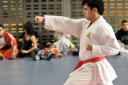 Stage di Karate con il Maestro S.J. Nekoofar Siziano (Pv)