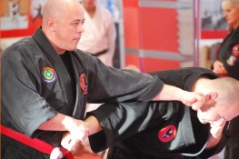 Stage Ryu Kyu Kempo 2016 con M   Dustin L  Seale