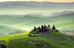 Convocazione di Assemblea Regionale Ordinaria Elettiva A S C  Toscana