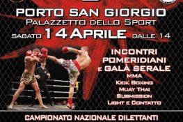 Campionato di Boxe  Day in the cage 3  - ASC Marche