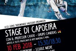 Stage di Capoeira ASC Verona