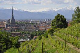 Convocazione di Assemblea Regionale Ordinaria A.S.C. Piemonte