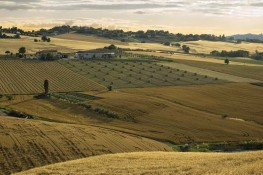 Convocazione di Assemblea Regionale Ordinaria Elettiva A.S.C. Emilia Romagna