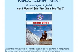 NGOC DINH  - Stage ASC Treviso